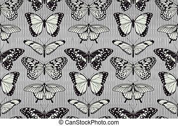 farfalla, modello, fondo