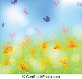 farfalla, prato, colorito