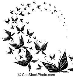 farfalla, sciame