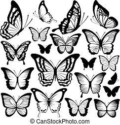 farfalla, silhouette, nero