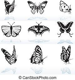 farfalla, silhouette