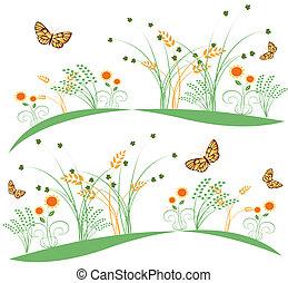 farfalle, fiori, 6