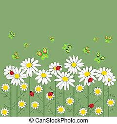 farfalle, fiori, fila