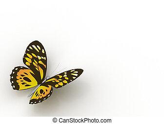 farfalle, isolato, bianco