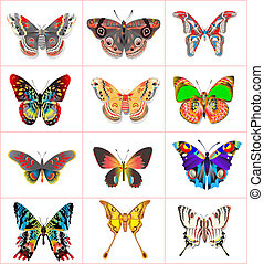 farfalle, set, insetto, fondo, bianco