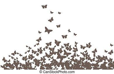 farfalle, vettore, nero