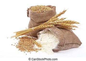farinha, grão trigo