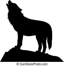 farkas, álló, és, ordító