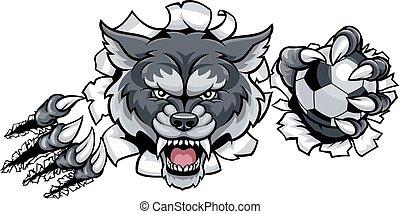 farkas, törő, háttér, futball, kabala