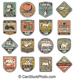 Farm agriculture, dairy and cattle farming