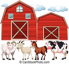 Farm animals and farmhouses