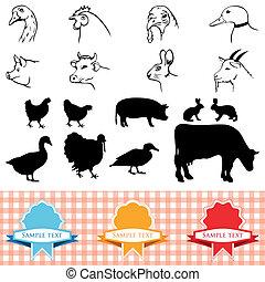 farm animals, vintage frame, labels food illustration