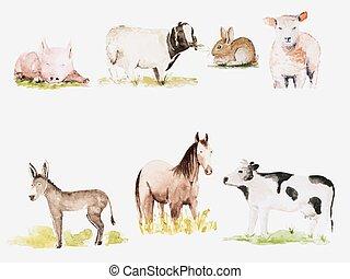 Farm animals - Vector watercolor drawn farm animals set