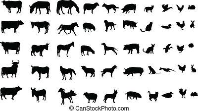 farm animals - Collection of farm animals silhouettes -...