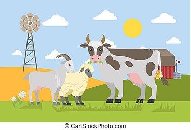 Farm animals graze on the field