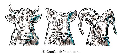 Farm animals icon set. Pig, cow and goat heads isolated on...