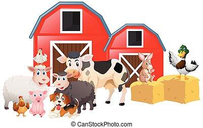 Farm animals in the barn