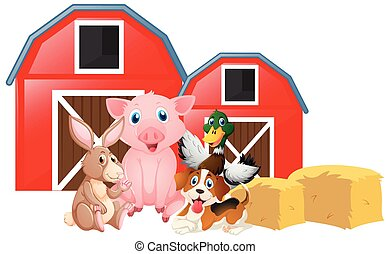 Farm animals in the farm