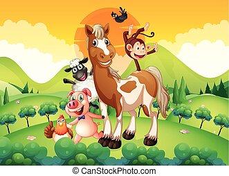 Farm animals in the field