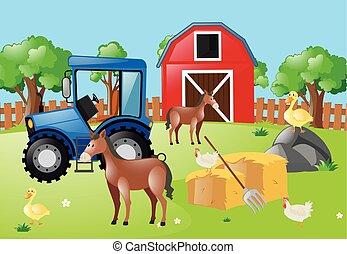 Farm animals living in the farm