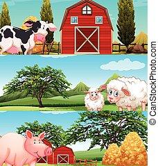Farm animals living on the farm