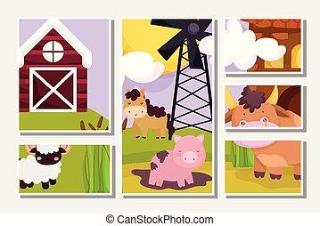 farm animals pig horse bull goat windmill barn scene cards