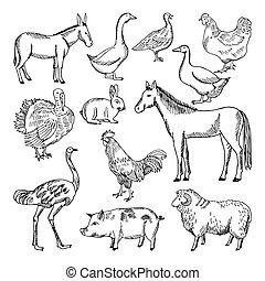 Farm animals set in hand drawn style. Vector illustrations