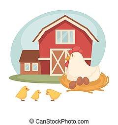 Farm barn or farmer household chicken hatch vector flat design