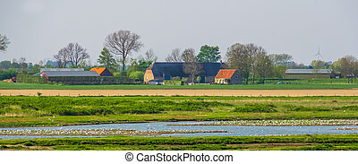 Farm building in the schakerloopolder of Tholen, countryside and nature reserve, Zeeland, The netherlands