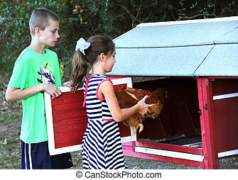 Farm Chores Involve Caring for Chickens