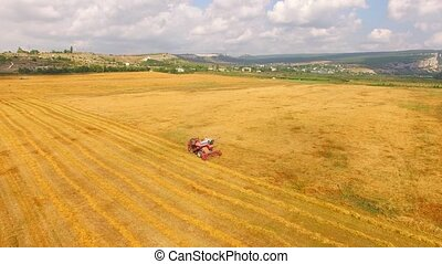 Farm Combine Harvester Working In Golden Field