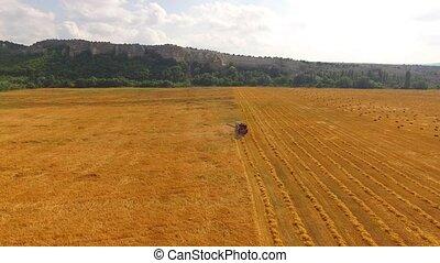 Farm Combine Harvester Working In Golden Field