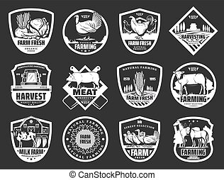 Farm dairy and cattle meat or fowl products icons