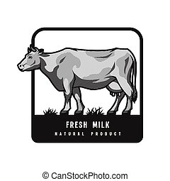 Farm dairy cow. Logo, emblem in engraved style. Vector illustration.