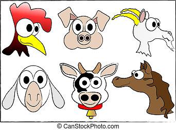 farm domestic animals
