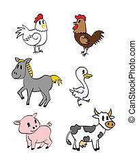 farm dyr, samling