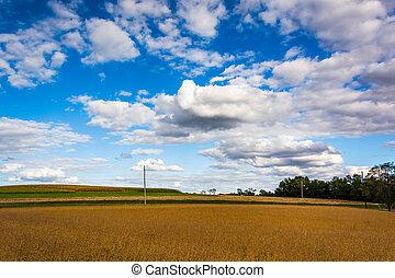 Farm field in rural York County, Pennsylvania.