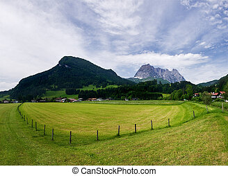 Farm field in Austrian Alps, Tirol, summer
