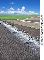 Farm field with irrigation system