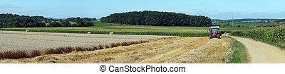 Farm fields in Luxembourg