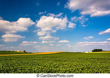 Farm fields in rural York County, Pennsylvania.