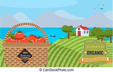 Farm flat landscape. Organic food concept. Flat design.