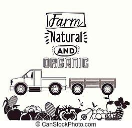 Farm Food digital design, vector illustration eps 10