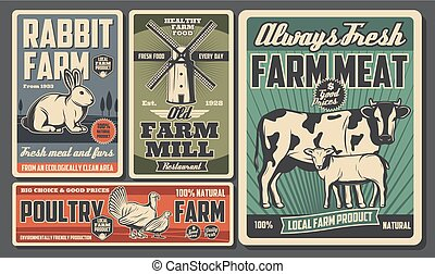 Farm food products, cattle and poultry farming
