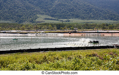 Farm for cultivation of lobsters in Thailand