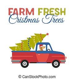 Farm fresh Christmas trees flat color vector icon