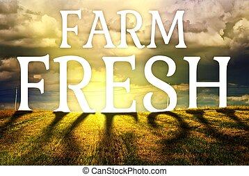 Farm fresh concept agriculture field landscape