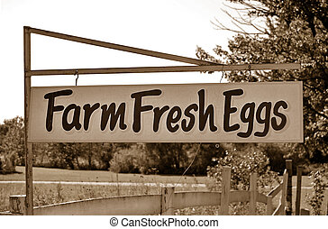 Farm Fresh Eggs - Rusty old sign advertising farm fresh...