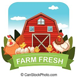 Farm fresh theme with chickens and barn