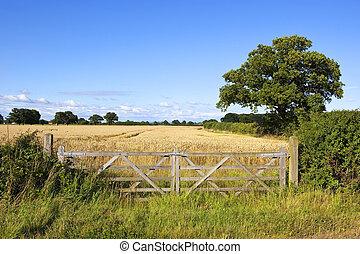 farm gates and oak tree